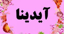 معنی اسم آیدینا – نام آیدینا – زیباترین اسم های دخترانه ترکی