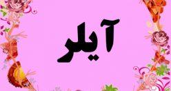 معنی اسم آیلر – نام آیلر – زیباترین اسم های دخترانه ترکی