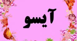 معنی اسم آیسو – نام آیسو – زیباترین اسم های دخترانه ترکی