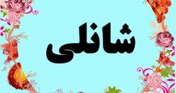 معنی اسم شانلی – معنی شانلی – نام پسرانه ترکی