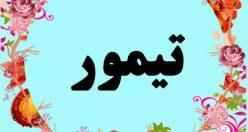 معنی اسم تیمور – معنی تیمور – نام پسرانه ترکی