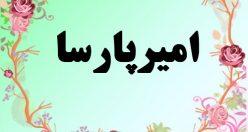 معنی اسم امیر پارسا – معنی امیر پارسا – نام پسرانه فارسی