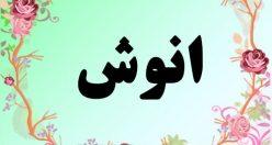 معنی اسم انوش – معنی انوش – نام پسرانه فارسی