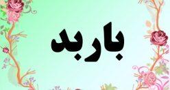 معنی اسم باربد – معنی باربد – نام پسرانه فارسی
