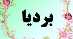 معنی اسم بردیا – معنی بردیا – نام پسرانه فارسی