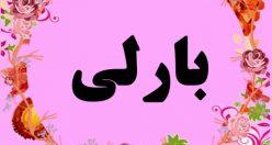 معنی اسم بارلی – نام بارلی – زیباترین اسم های دخترانه ترکی