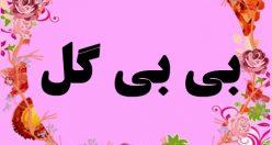 معنی اسم بی بی گل – نام بی بی گل – زیباترین اسم های دخترانه ترکی