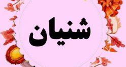 معنی اسم شنیان – نام شنیان – اسمهای کردی دخترانه