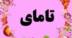 معنی اسم تامای – نام تامای – زیباترین اسم های دخترانه ترکی