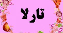 معنی اسم تارلا – نام تارلا – زیباترین اسم های دخترانه ترکی