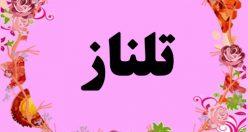 معنی اسم تلناز – نام تلناز – زیباترین اسم های دخترانه ترکی