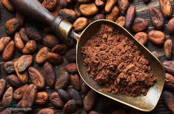 47 خواص درمانی شگفت انگیز گیاه کاکائو