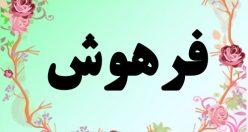 معنی اسم فرهوش – معنی فرهوش – نام پسرانه فارسی
