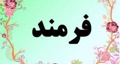 معنی اسم فرمند – معنی فرمند – نام پسرانه فارسی
