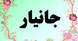 معنی اسم جانیار – معنی جانیار – نام پسرانه فارسی