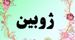 معنی اسم ژوبین – معنی ژوبین – نام پسرانه فارسی