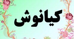 معنی اسم کیانوش – معنی کیانوش – نام پسرانه فارسی
