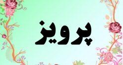 معنی اسم پرویز – معنی پرویز – نام پسرانه فارسی