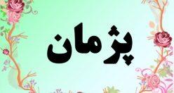 معنی اسم پژمان – معنی پژمان – نام پسرانه فارسی