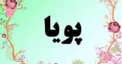 معنی اسم پویا – معنی پویا – نام پسرانه فارسی