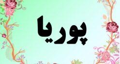 معنی اسم پوریا – معنی پوریا – نام پسرانه فارسی