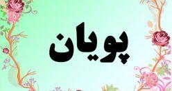 معنی اسم پویان – معنی پویان – نام پسرانه فارسی