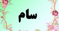 معنی اسم سام – معنی سام – نام پسرانه فارسی