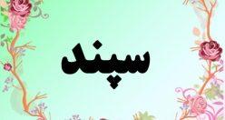 معنی اسم سپند – معنی سپند – نام پسرانه فارسی