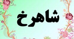 معنی اسم شاهرخ – معنی شاهرخ – نام پسرانه فارسی