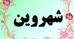 معنی اسم شروین – معنی شروین – نام زیبای پسرانه فارسی