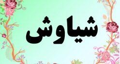 معنی اسم سیاوش – معنی سیاوش  – نام اصیل پسرانه فارسی