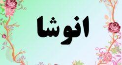 معنی اسم انوشا – معنی آنوشا – نام زیبای دخترانه فارسی