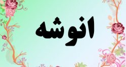 معنی اسم انوشه – معنی انوشه – نام دخترانه زیبای فارسی
