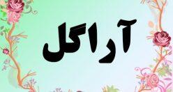معنی اسم آراگل – معنی آراگل – نام دخترانه فارسی