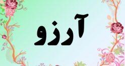 معنی اسم آرزو – معنی آرزو – نام دخترانه فارسی