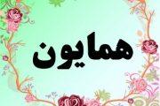 معنی اسم همایون – معنی همایون – نام پسرانه فارسی