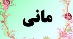معنی اسم مانی – معنی مانی – نام پسرانه فارسی