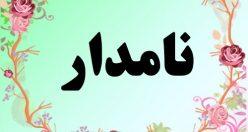 معنی اسم نامدار – معنی نامدار – نام پسرانه فارسی