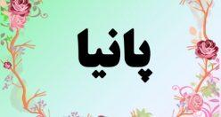 معنی اسم پانیا – معنی پانیا – نام دخترانه فارسی