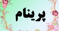 معنی اسم پرینام – معنی پرینام – نام زیبای دخترانه فارسی