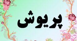 معنی اسم پریوش – معنی پریوش – نام دخترانه فارسی