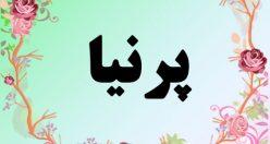 معنی اسم پرنیا – معنی پرنیان – نام دخترانه فارسی
