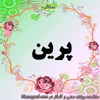 معنی اسم پرین – معنی پرین – نام زیبای دخترانه فارسی