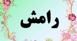 معنی اسم رامش – معنی رامش  –  نام زیبای دخترانه فارسی