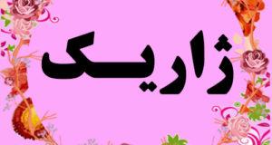 معنی اسم ژاریک – نام ژاریک – زیباترین اسم های دخترانه ترکی