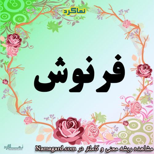 معنی اسم فرنوش – معنی فرنوشا – نام زیبای دخترانه فارسی