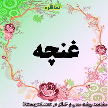 معنی اسم غنچه  – معنی غنچه – نام زیبای دخترانه فارسی