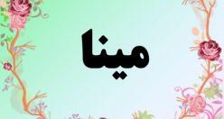 معنی اسم مینا  – معنی مینا – نام زیبای دخترانه فارسی