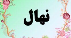 معنی اسم نهال – معنی نهال – نام زیبای دخترانه فارسی