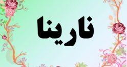معنی اسم نارینا – معنی نارینا – نام زیبای دخترانه فارسی